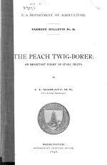 The Peach Twig-borer