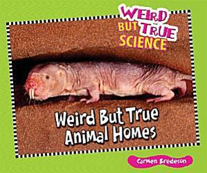 Weird But True Animal Homes