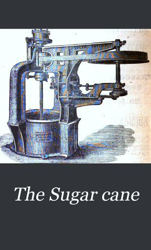 The Sugar Cane