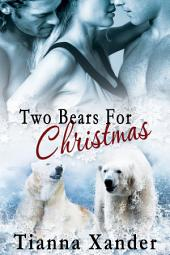 Two Bears for Christmas
