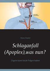 Schlaganfall (Apoplex), was nun?: Zögern kann fatale Folgen haben