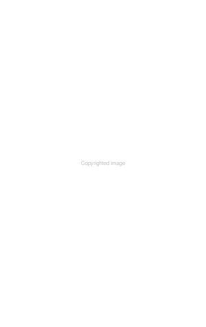 The Black Hills Engineer