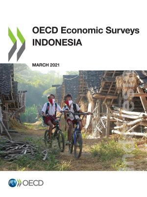 OECD Economic Surveys  Indonesia 2021 PDF