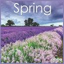 Spring 2021 Wall Calendar