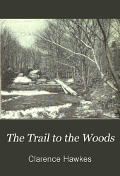 The Trail to the Woods