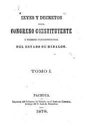 Leyes y decretos del congreso constituyente y primero constitucional del estado de Hidalgo: Volumen 1