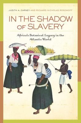 In the Shadow of Slavery PDF
