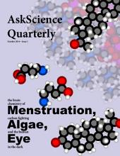 AskScience Quarterly: the brain chemistry of Menstruation, carbon fighting Algae, and the human Eye in the dark