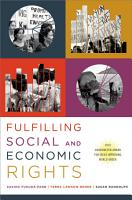 Fulfilling Social and Economic Rights PDF