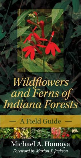 Wildflowers and Ferns of Indiana Forests PDF