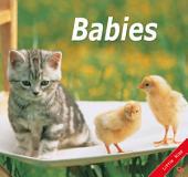 Babies: Little Kiss31