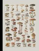 Vintage Botanical Illustration Journal