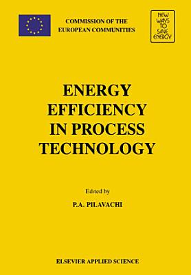 Energy Efficiency in Process Technology