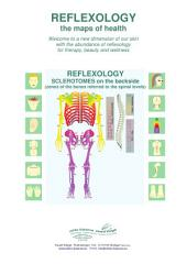 REFLEXOLOGY - SCLEROTOMES on the backside: REFLEXOLOGY - the maps of health
