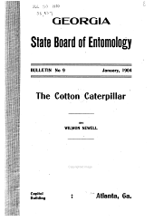 The Cotton Caterpillar