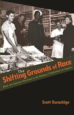 The Shifting Grounds of Race PDF