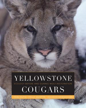 Yellowstone Cougars