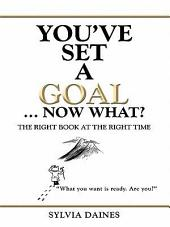 You've Set a Goal ... Now What?: The Right Book at the Right Time