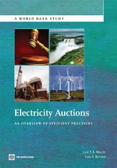 Electricity Auctions: An Overview of Efficient Practices