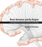 Brain Structure and Its Origins