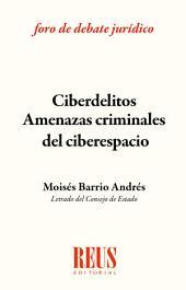 Ciberdelitos: amenazas criminales del ciberespacio: Adaptado reforma Código Penal 2015