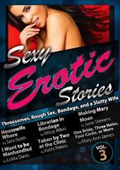 Sexy Stories Volume 3