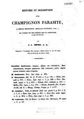 Histoire et description d'un champignon parasite: le mérule destructeur des bois de construction