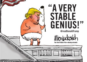 A Very Stable Genius Book