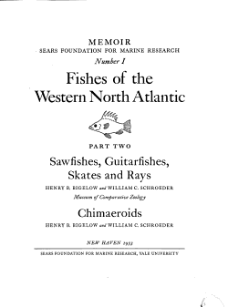 Fishes of the Western North Atlantic PDF