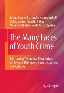 The Many Faces of Youth Crime PDF