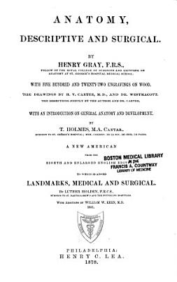 Anatomy  Descriptive and Surgical PDF