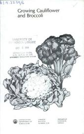 Growing cauliflower and broccoli