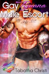 Gay Tijuana Male Escort (Straight First Time Gay Erotica): Interracial Gay Erotica