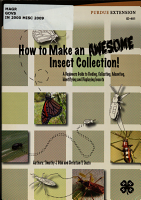 How to Make an Awesome Insect Collection  PDF