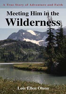 Meeting Him in the Wilderness