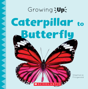 Caterpillar to Butterfly  Growing Up  PDF