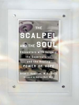 The Scalpel and the Soul PDF