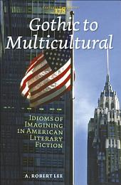 Gothic to Multicultural: Idioms of Imagining in American Literary Fiction