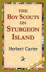The, Boy Scouts on Sturgeon Island