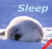Sleep: Little Kiss45