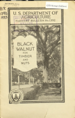 Black Walnut for Timber and Nuts