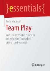Team Play: Was Counter Strike-Spielern bei virtueller Teamarbeit gelingt und was nicht