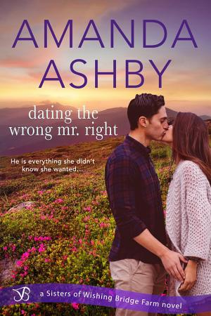 Dating the Wrong Mr  Right PDF
