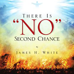There Is No Second Chance Book PDF
