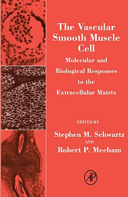 The Vascular Smooth Muscle Cell