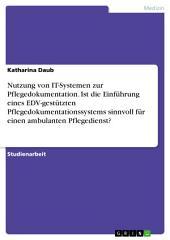 Nutzung von IT-Systemen zur Pflegedokumentation. Ist die Einführung eines EDV-gestützten Pflegedokumentationssystems sinnvoll für einen ambulanten Pflegedienst?