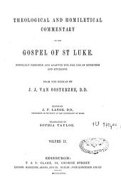 Theological and Homiletical Commentary on the Gospel of St-Luke: Volume 2