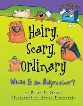 Hairy, Scary, Ordinary: What Is an Adjective?