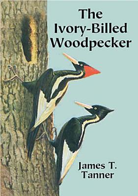 The Ivory Billed Woodpecker PDF