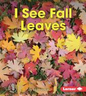 I See Fall Leaves